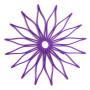 Blossom Trivit - Tilandsia Purple
