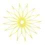 Blossom Trivet - Translucent Green